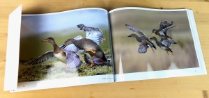 mijndrukker.nl Fotoboek Ep de Ruiter NATUURLIJK eenden Ronald Boiten Boekprojecten