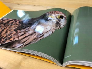 mijndrukker.nl Fotoboek Ep de Ruiter NATUURLIJK extreem hoge glans Ronald Boiten Boekprojecten